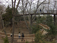 large-aviary