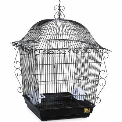 Hanging Parakeet Cage