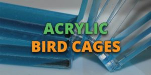 acrylic bird cages