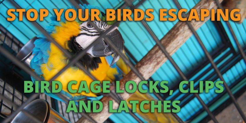 bird cage locks