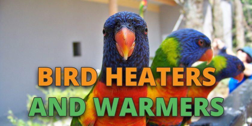 bird heaters and warmers
