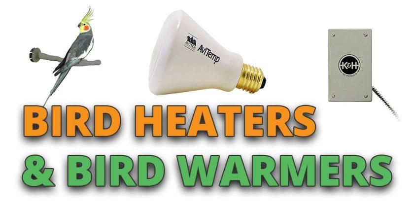 bird heater