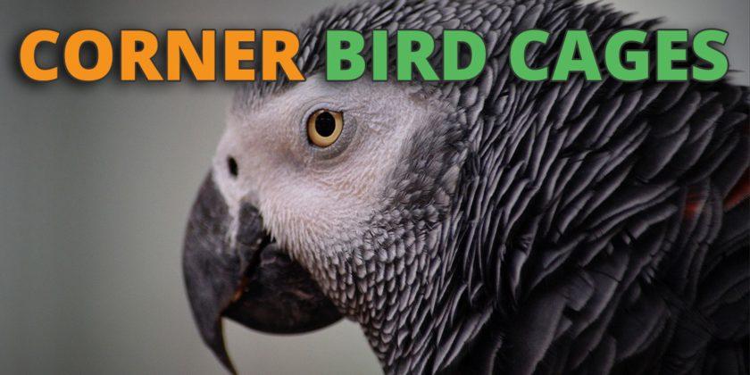 corner bird cage