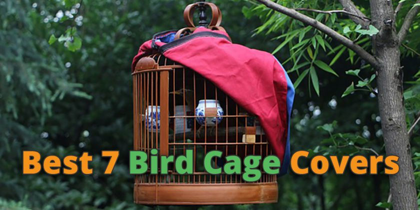 Bird Cage Covers