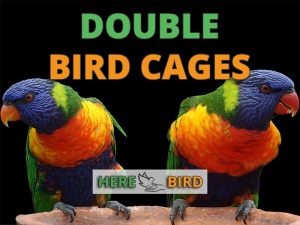 double-bird-cages
