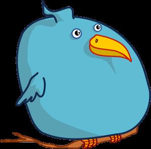 fat-birds