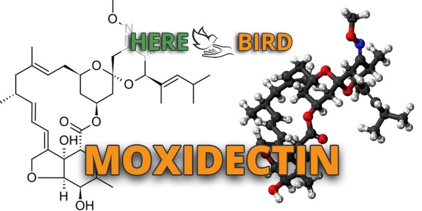 moxidectin-plus-featured