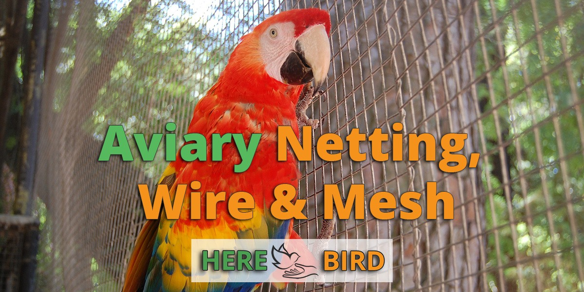 aviary netting and wire mesh