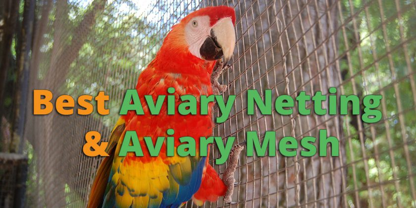 Aviary Netting and Aviary Mesh