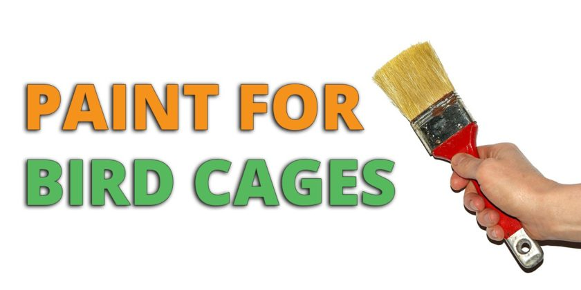 paint for bird cages
