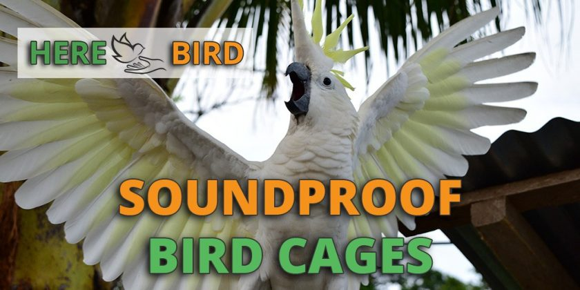 soundproof-bird-cage