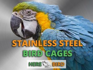 stainless-steel-bird-cages