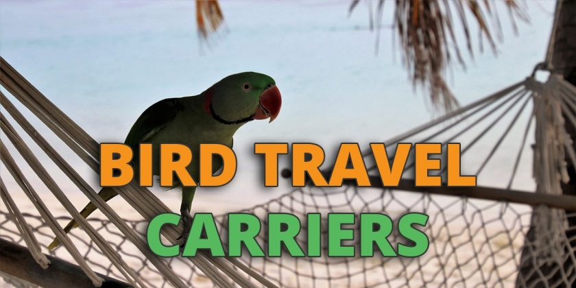 Soft Sided Travel Bird Carrier A and E Cage Co
